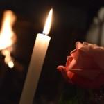 bougies et rose